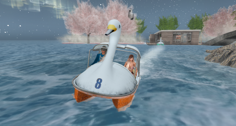 スワンボートに乗れる